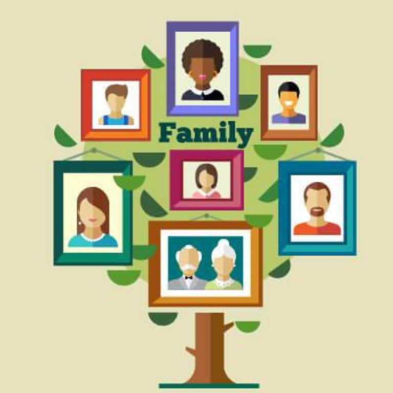 Graphic of a family tree with photos hanging onto branches. Family History pbs rewire