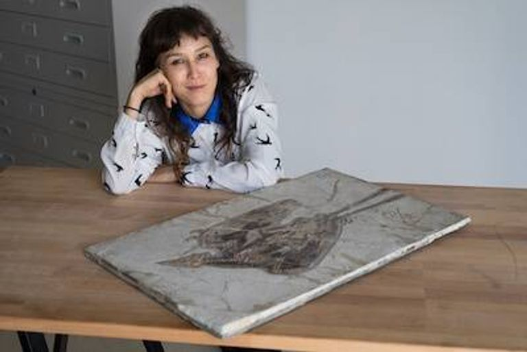 Photo of Jingmai O'Connor posing with an ancient bird fossil. pbs rewire