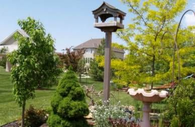 backyard with bird feeder and birdbath