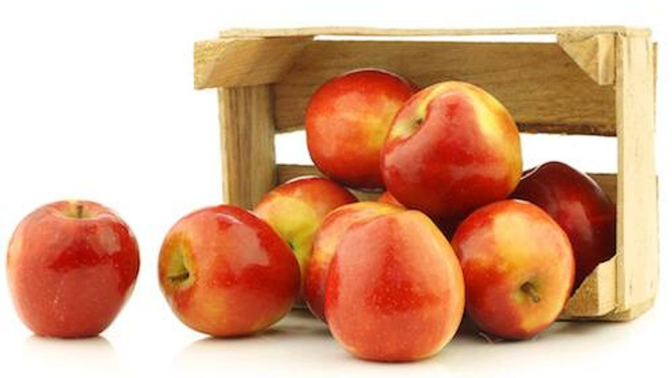"fresh Dutch ""Jazz"" apples in a wooden crate"