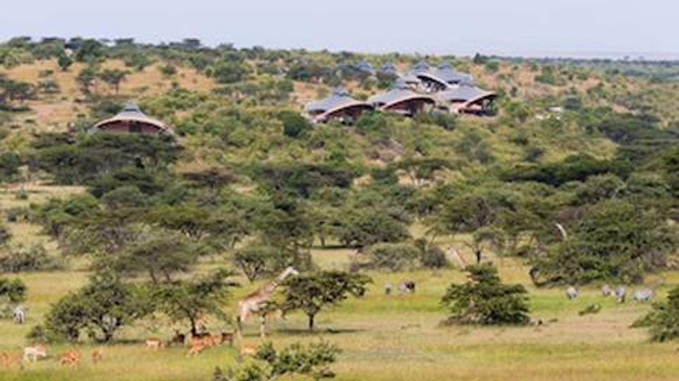 Animals in the lush valley beside Mahali Mzuri Safari Camp
