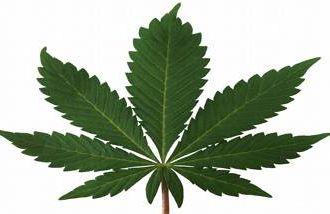 Many baby boomers are turning to marijuana.