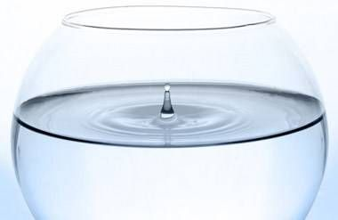 A clear bowl of water