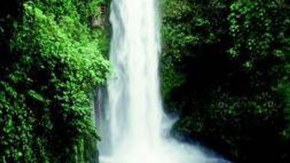Waterfalls and rain forests abound at the Costa Rica Learning Journey.