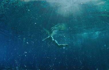 Saturnia swimmer under water
