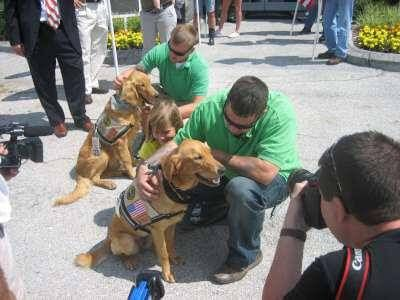 Marines with PTSD meet their service dogs.