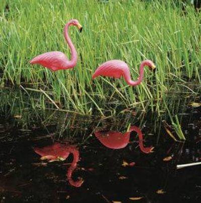 62360SC Flamingos
