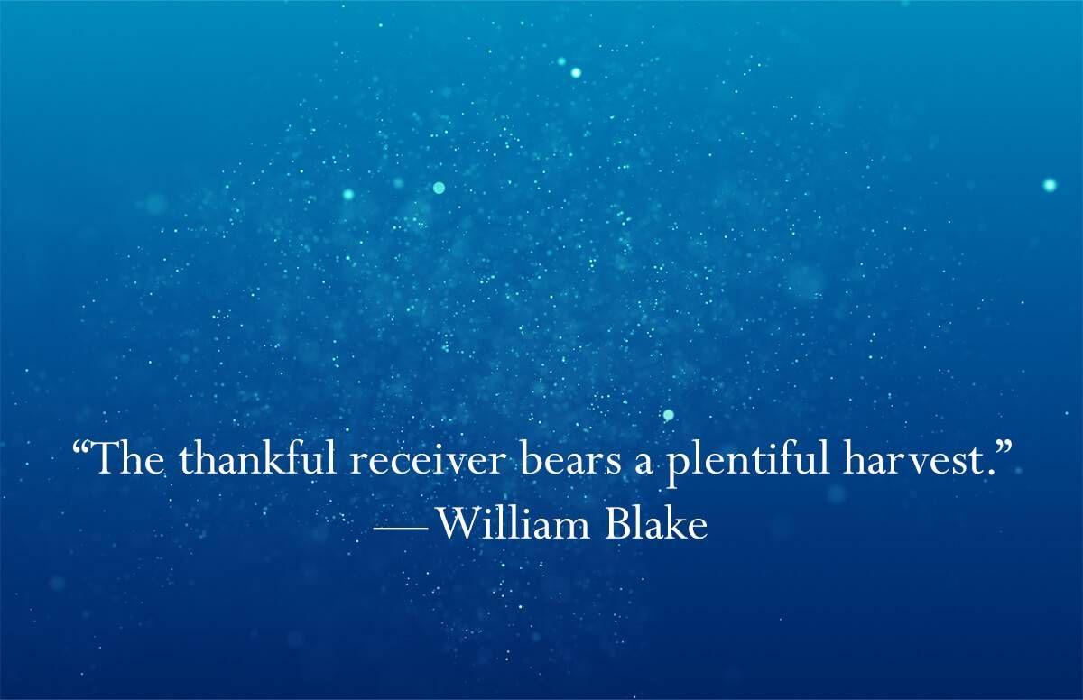 30-Gratitude-Quote