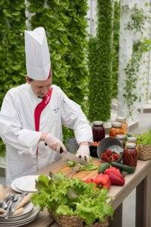 A chef at Garden Spot Village Retirement Community in New Holland, Pa., cuts up vegetables that were grown by residents in the community garden