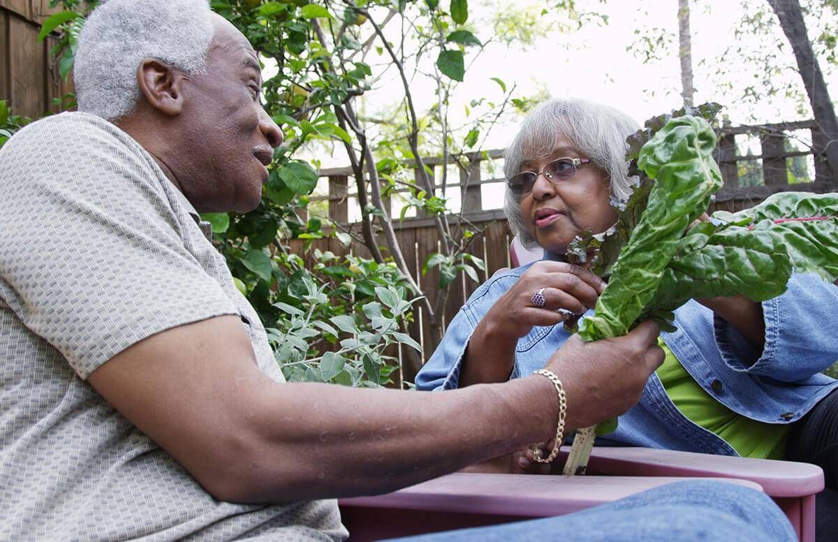 older couple enjoying produce from their garden