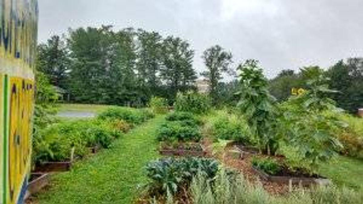 Belchertown School garden