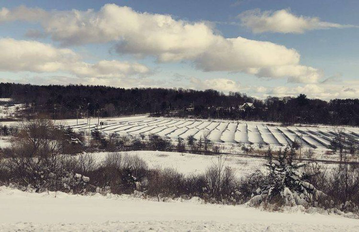 NexAmp's Westerlo solar farm right after a snowfall.