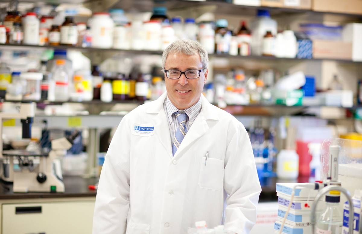 Dr. Nir Barzilai, Scientific Director for the American Federation for Aging Research, in his lab at the Albert Einstein College of Medicine, Bronx, NY