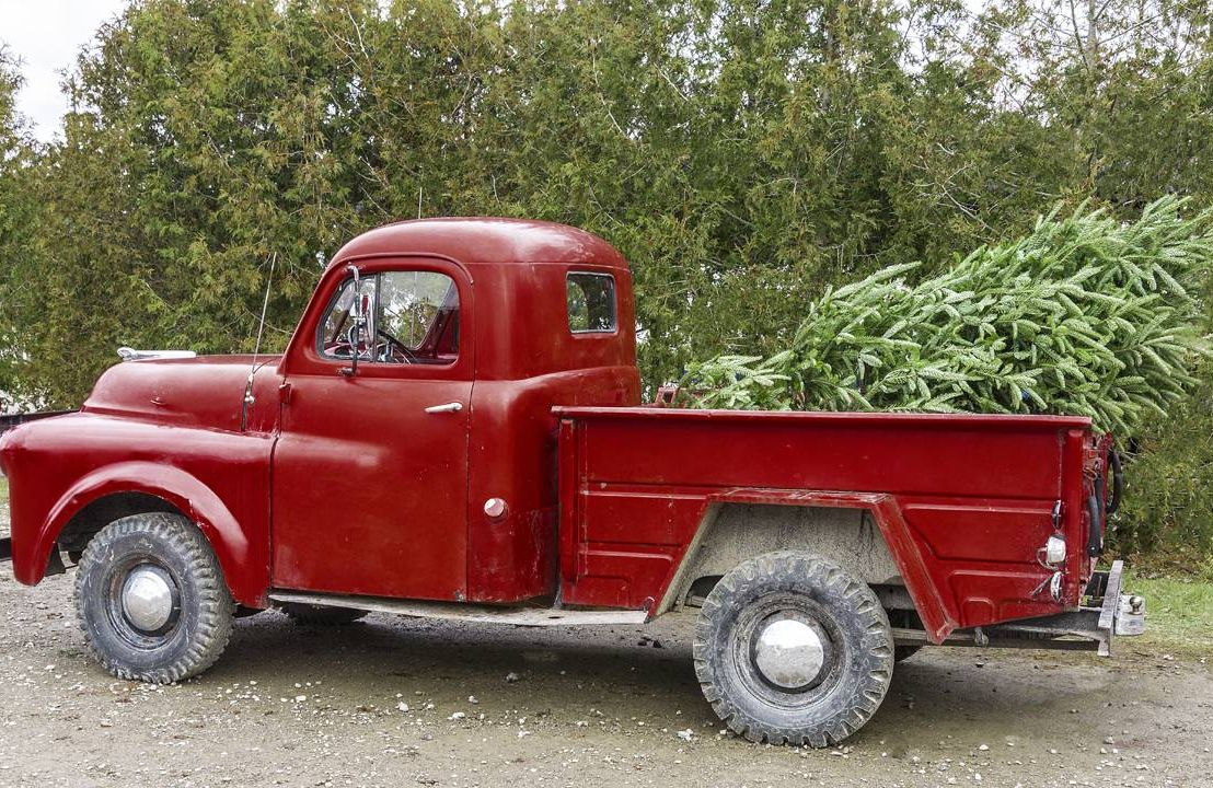 Pickup truck with tree, a christmas story, next avenue, holiday, holidays