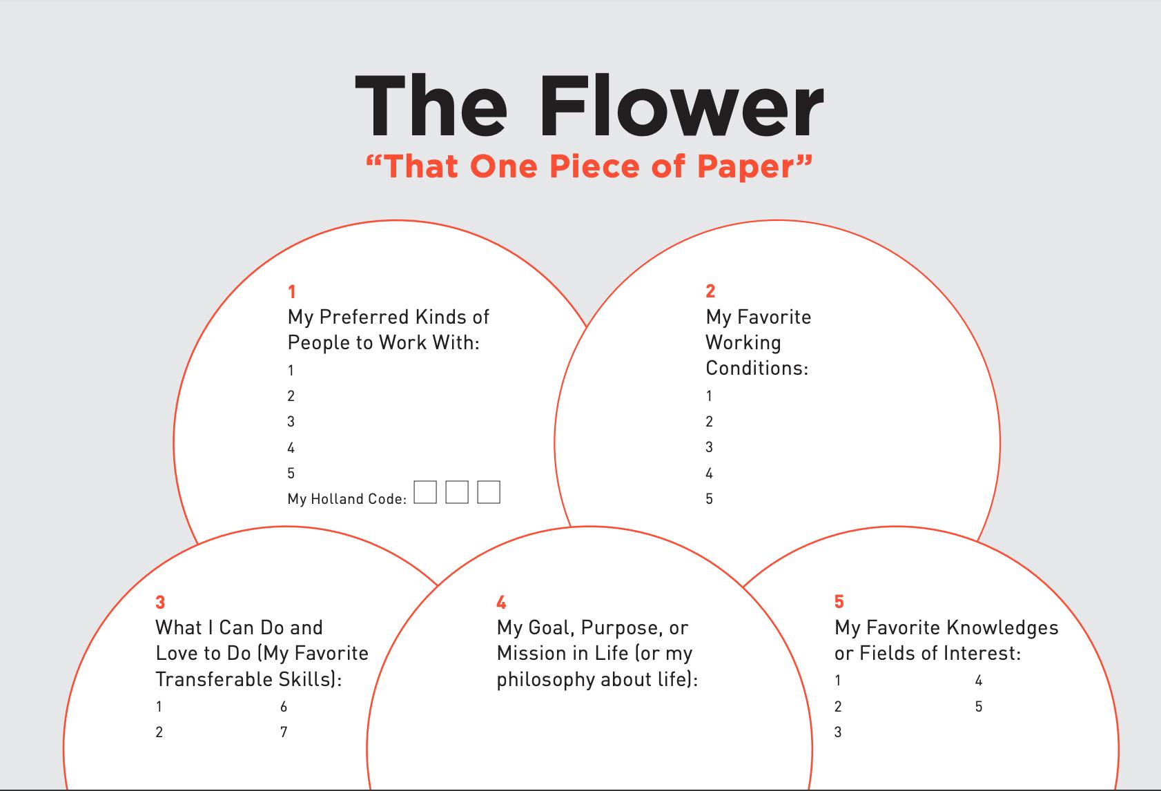 Parachute flower diagram, 28 year job search