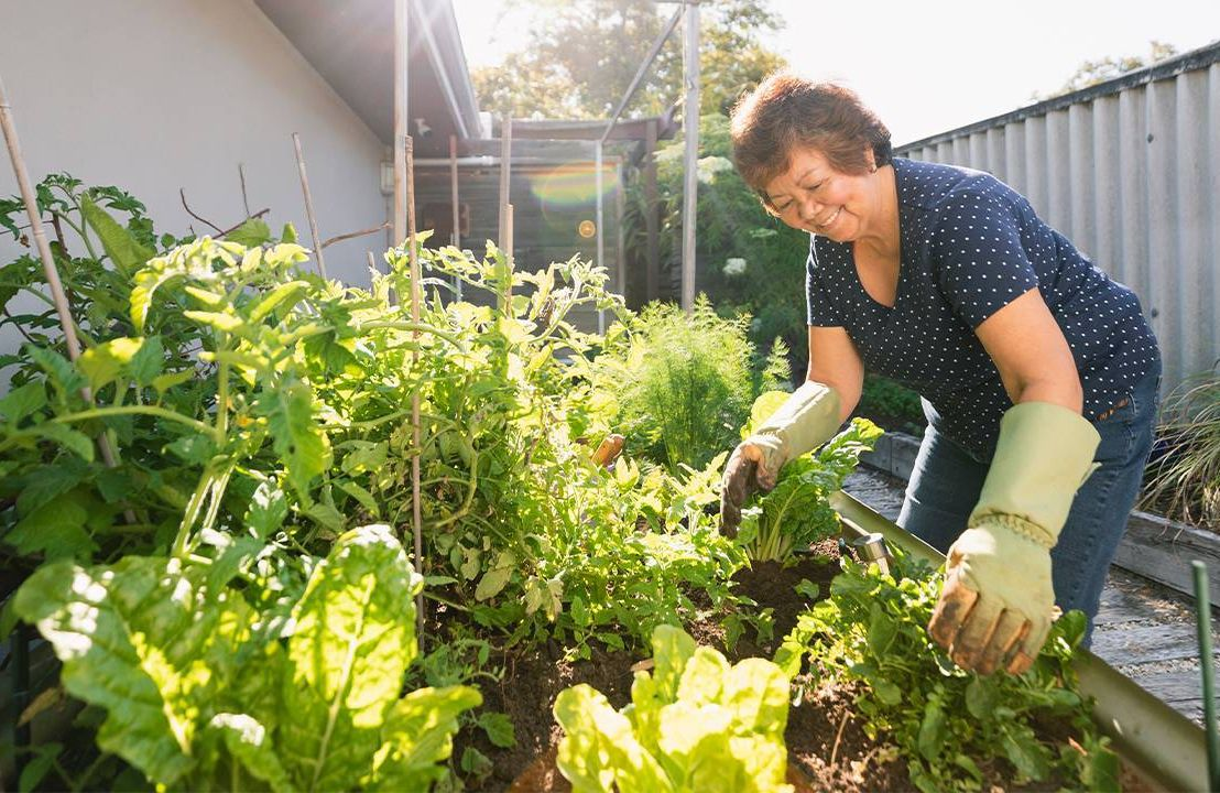 An older woman outside working in her vegetable garden. Aging well, age, Next Avenue