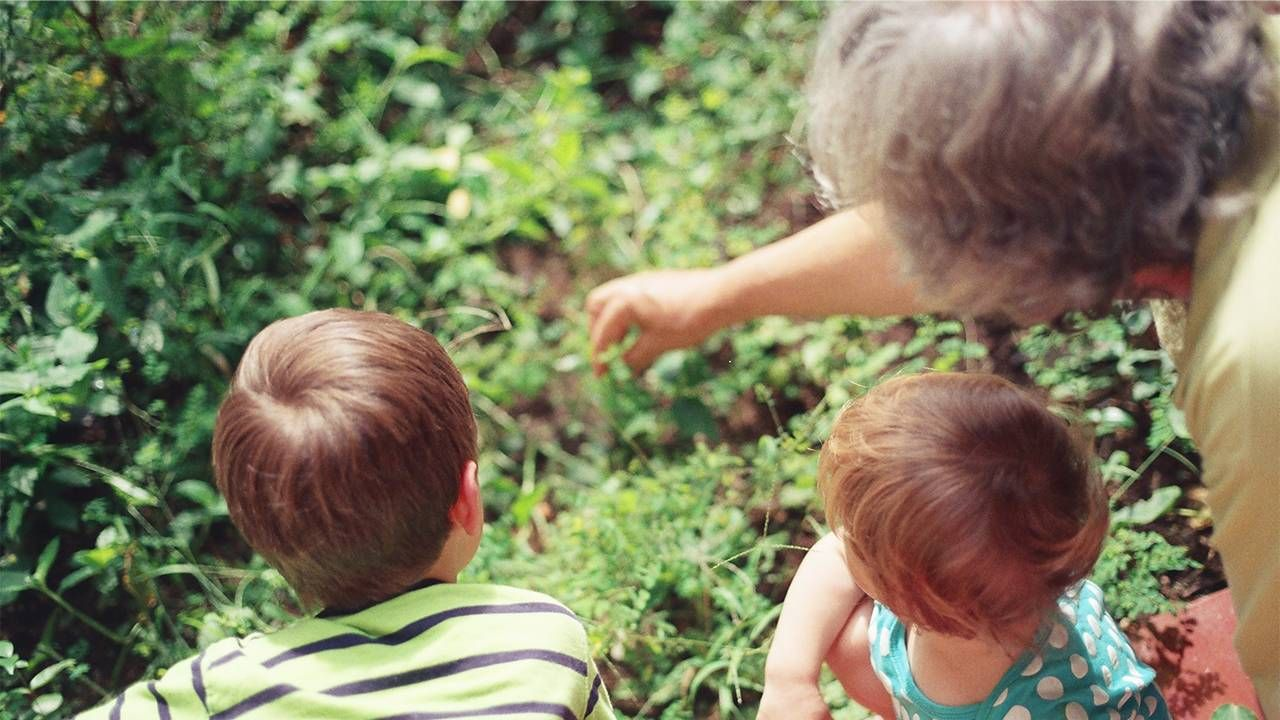 A grandmother playing with her two grandkids in the garden. Grandparenting, Next Avenue