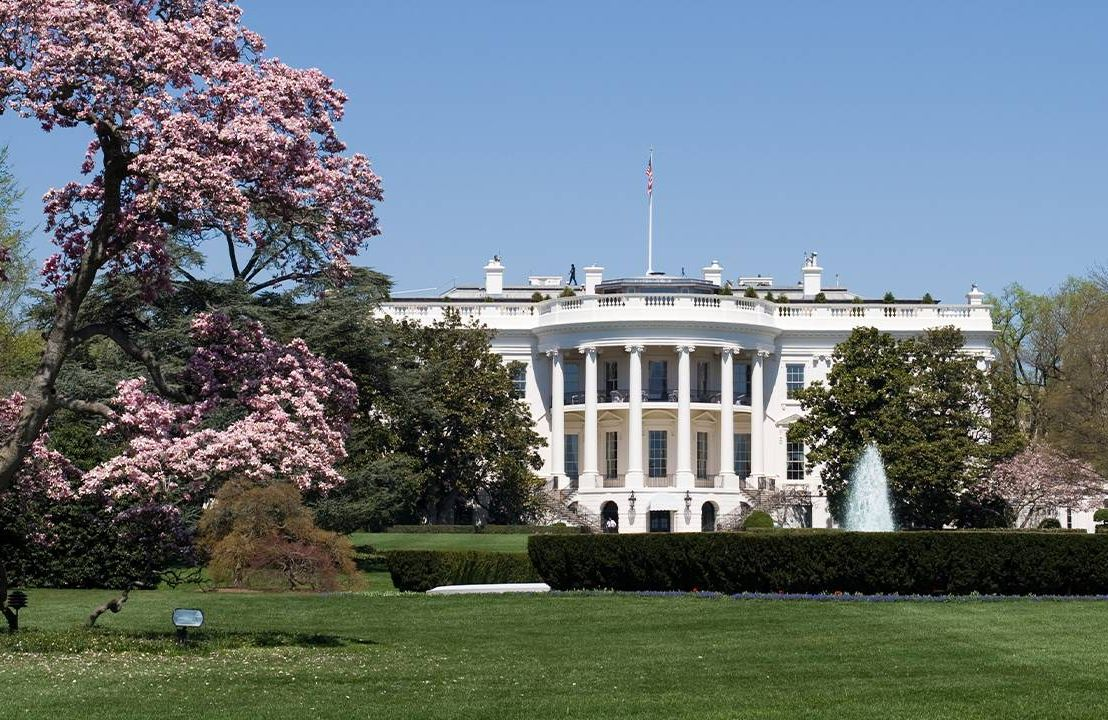 The U.S. White House in Spring with a Cherry Blossom Tree. Aging, retirement, Next Avenue