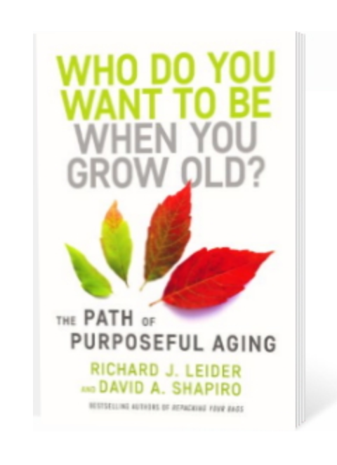 """""""What Do You Want to Be When You Grow Old?"""" book, late-life crisis"""