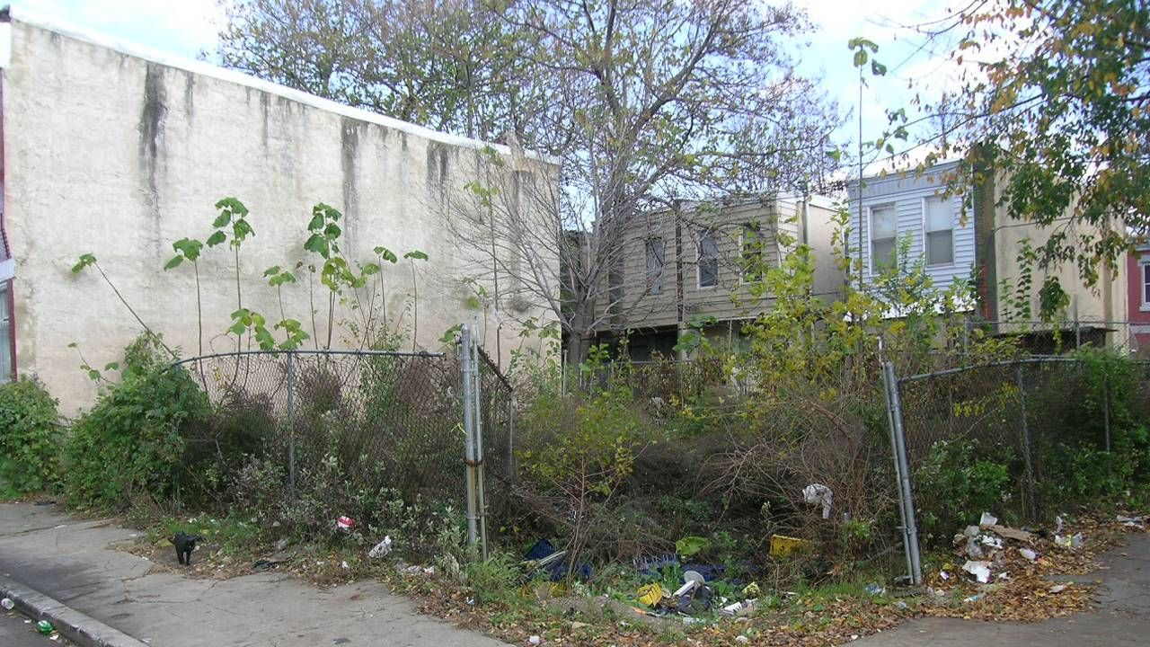 A vacant lot with overgrown weeds and trash. Next Avenue, mini-parks, parks, mental health