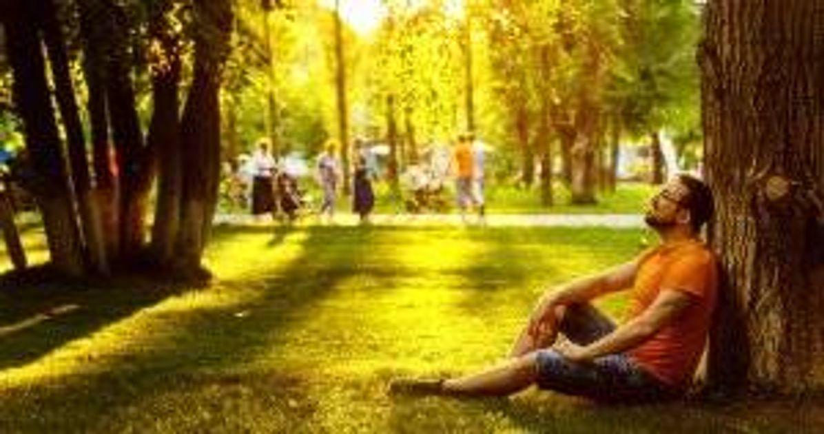 A happy man sitting on green grass in a park. Fear pbs rewire