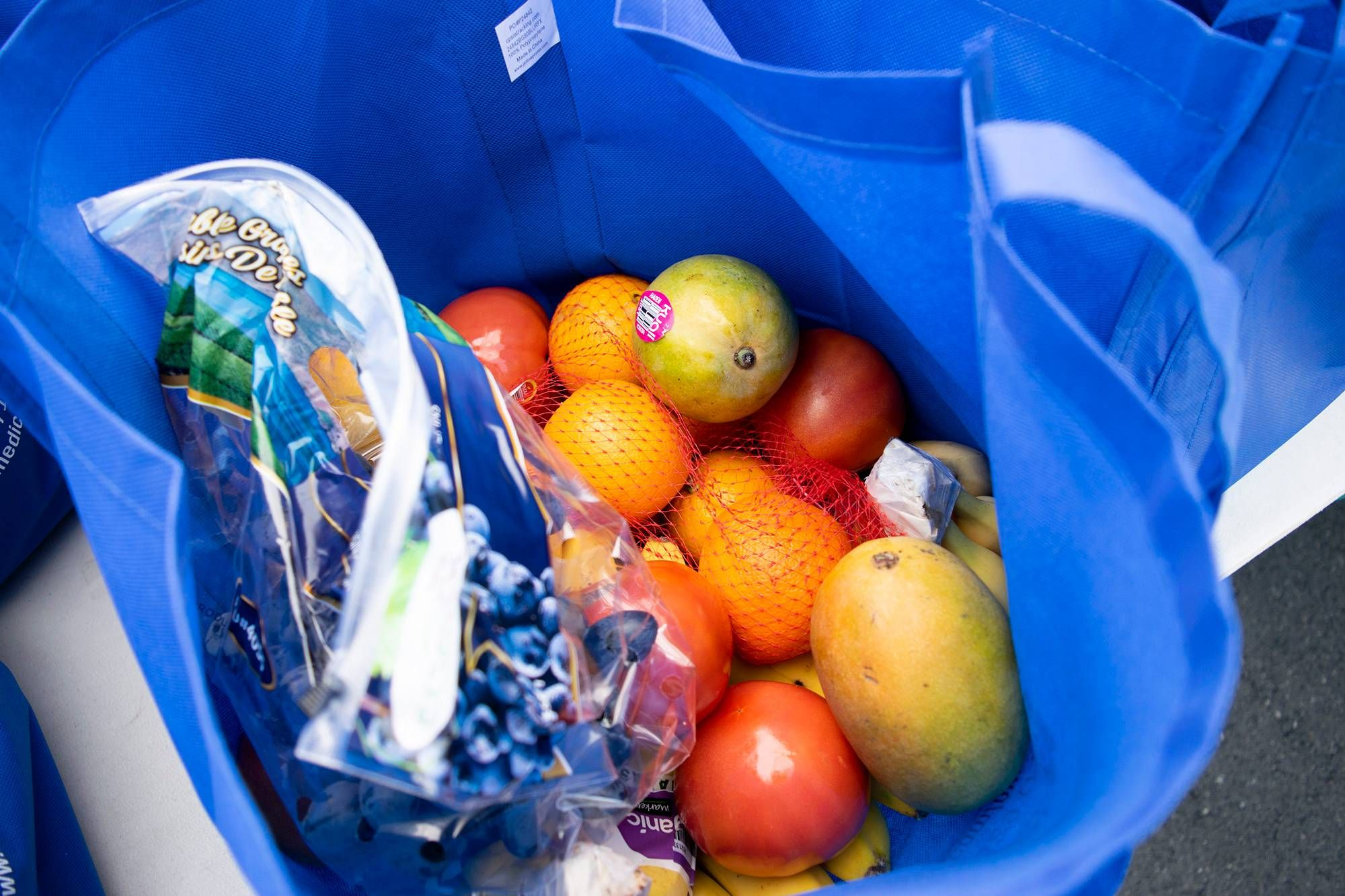 A photo looking inside of a blue bag, filled with fresh produce. Rewire PBS Our Future Food Banks