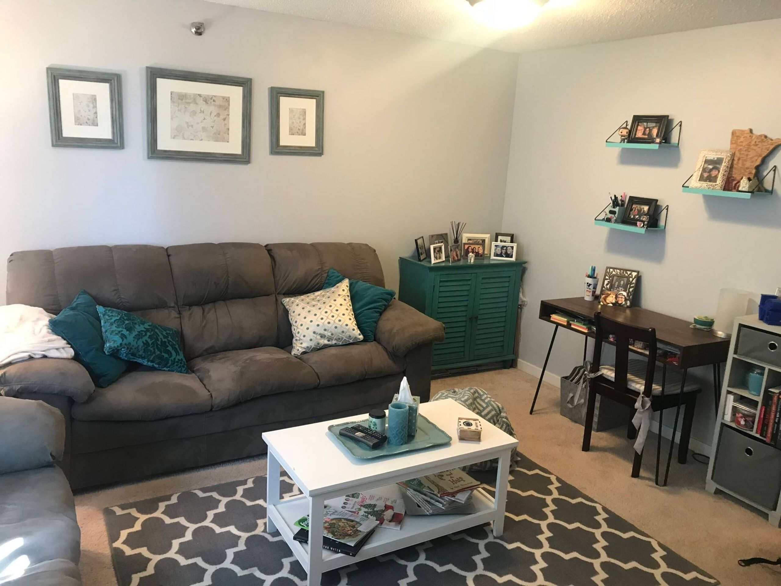 A furnished apartment living room with couch, chair, desk, coffee table, and rug REWIRE PBS living with parents