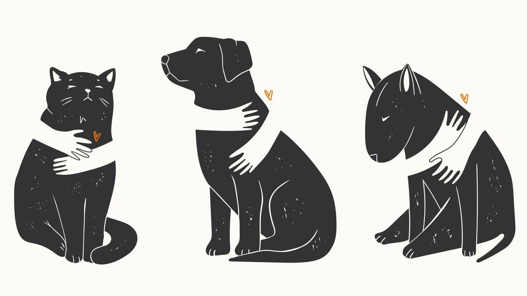 Illustration of a cat and two dogs being hugged, pet, pets, goodbye to a pet, euthanize, Rewire, PBS Love