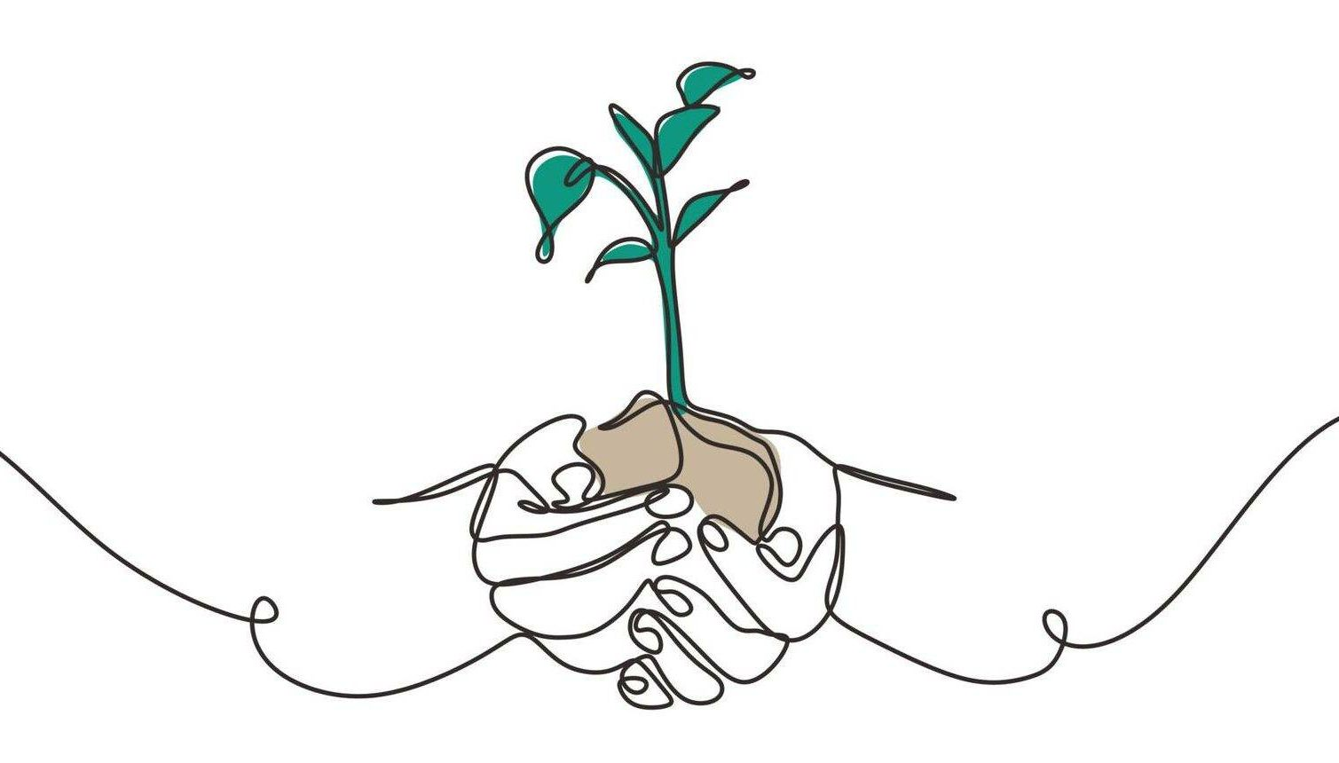 Trauma, post-traumatic growth, Rewire, PBS, Continuous one line drawing of plant in hand. Hands holding nature sign and symbol vector illustration. Minimalism design and simplicity sketch hand drawn.
