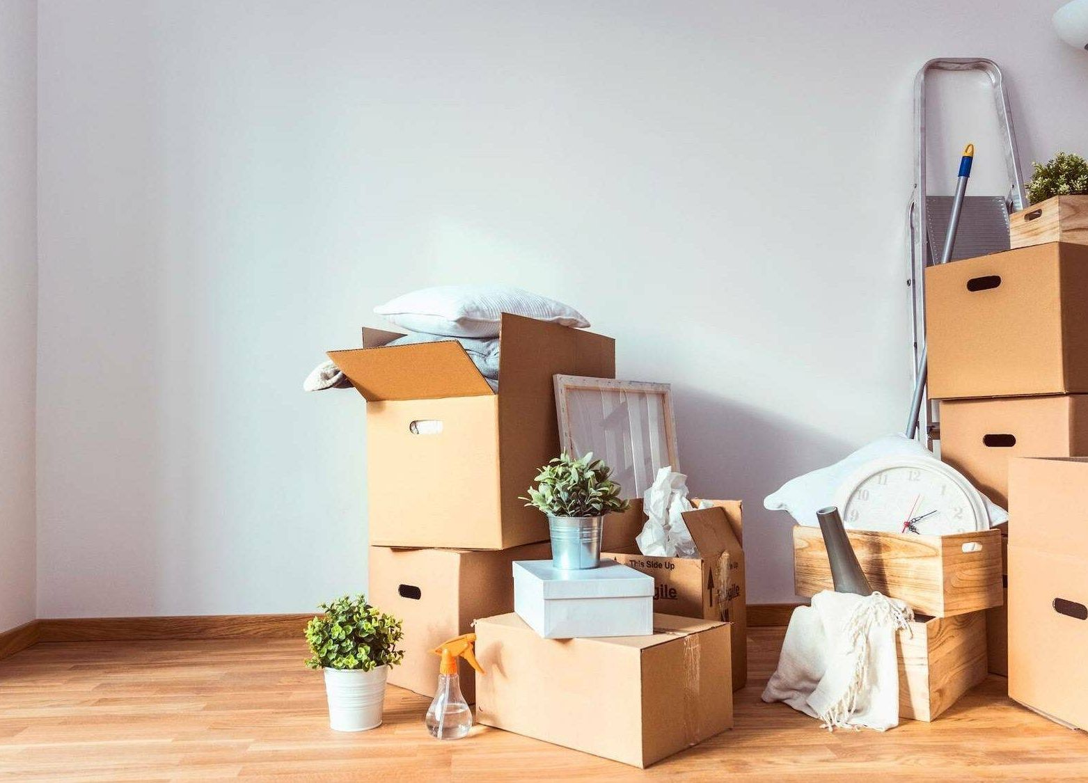Photograph of moving boxes, household items, and cleaning supplies on the wooden floor of an apartment. Moving, moved, Rewire, PBS